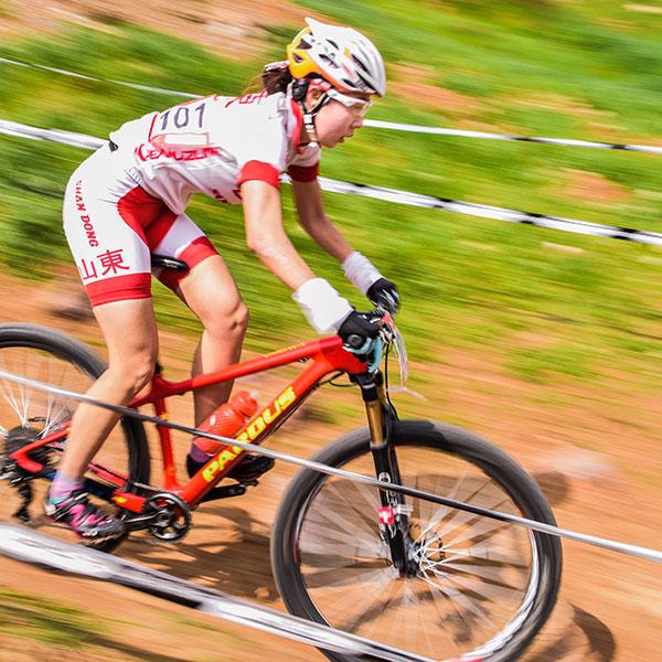 gallery-bikes-600